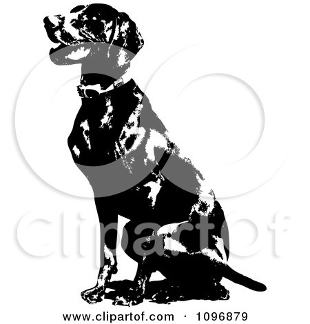 Clipart Black And White Sitting German Short Haired Pointer Dog - Royalty Free Vector Illustration by Maria Bell