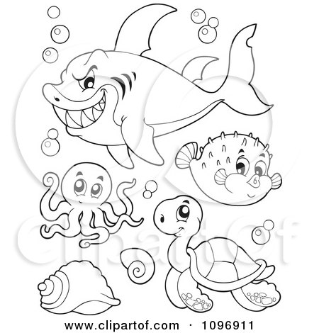 Clipart Outlined Mean Shark Octopus Puffer Fish And Sea Turtle - Royalty Free Vector Illustration by visekart