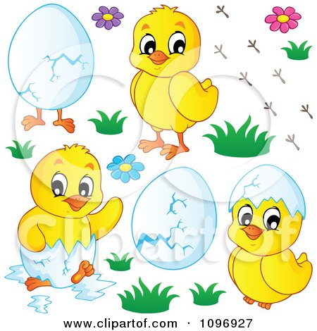 Clipart Hatching Spring Chicks Flowers And Eggs - Royalty Free Vector Illustration by visekart