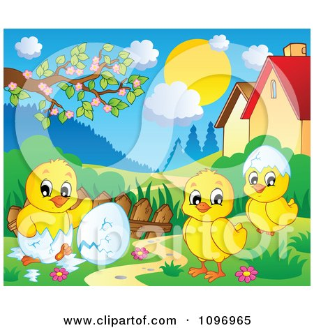 Clipart Hatching Spring Chicks In A Meadow - Royalty Free Vector Illustration by visekart