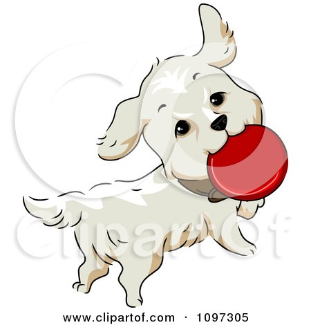 Clipart Happy Golden Retriever Dog Playing With A Flying Disc - Royalty Free Vector Illustration by BNP Design Studio