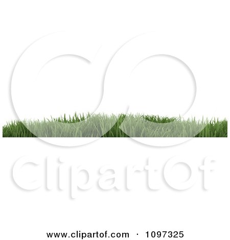Clipart 3d Website Border Of Green Grass - Royalty Free CGI Illustration by KJ Pargeter