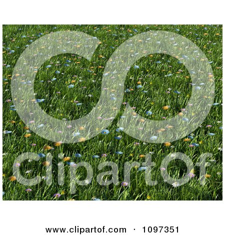 Clipart Background Of 3d Colorful Wildflowers In A Meadow Of Grass - Royalty Free CGI Illustration by KJ Pargeter