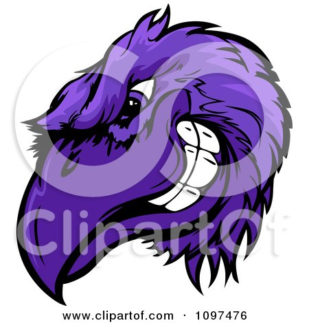 Clipart Grinning Competitive Purple Raven Or Crow Mascot Head - Royalty Free Vector Illustration by Chromaco