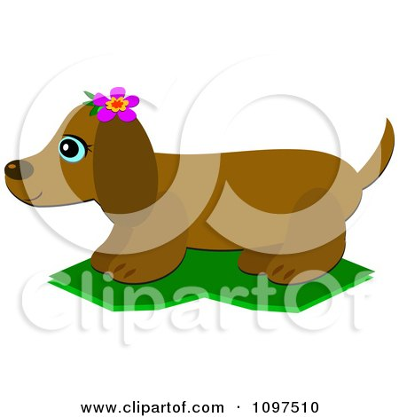 Clipart Happy Dachshund Dog Wearing A Pink Flower In Profile - Royalty Free Vector Illustration by bpearth