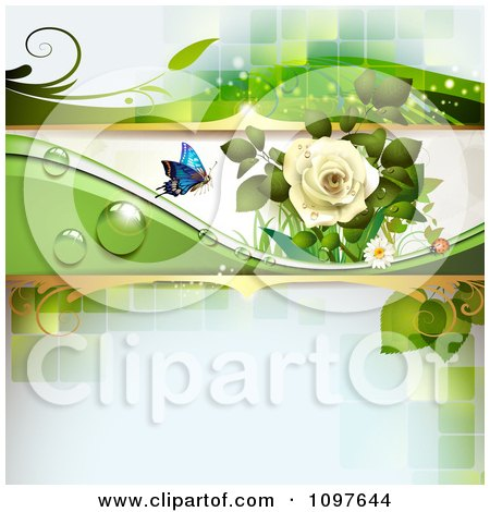 Clipart Spring Time Or Wedding Background With A White Rose And A Butterfly On Green - Royalty Free Vector Illustration by merlinul