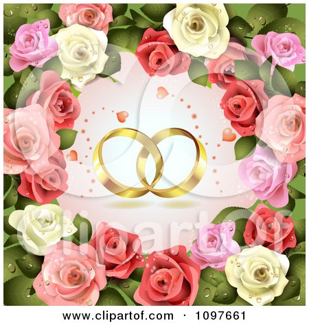 Clipart Engagement Or Wedding Background Golden Rings And Dewy Roses - Royalty Free Vector Illustration by merlinul