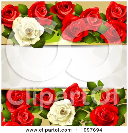 Valentines Day Or Wedding Background With Red And White Dewy Roses And Copyspace Posters, Art Prints