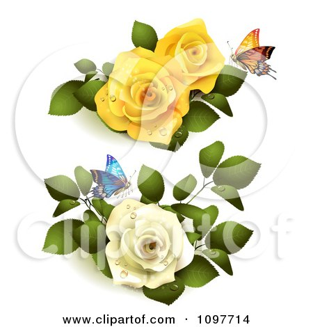 Yellow And White Roses With Butterflies And Leaves Posters, Art Prints
