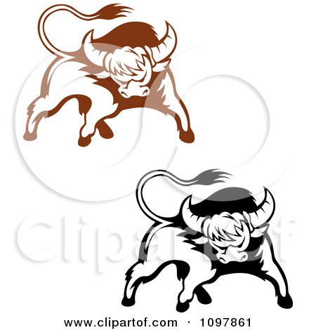 Black and White Longhorn Clip Art