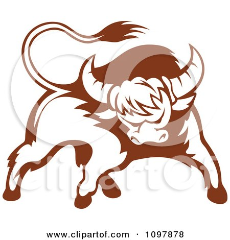 Clipart Brown And White Tough Bull 2 - Royalty Free Vector Illustration by Vector Tradition SM