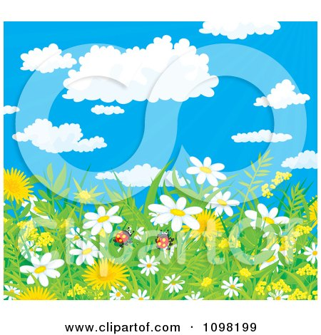 Background Of Ladybug Pair In Spring Dandelion And Daisy Flowers With A View Of The Sky Posters, Art Prints