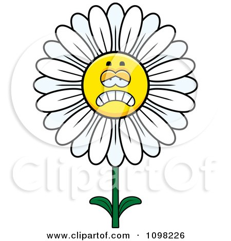 Clipart Depressed White Daisy Flower Character - Royalty Free Vector Illustration by Cory Thoman