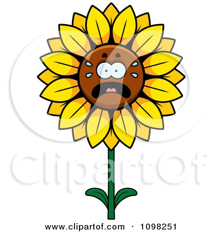 Clipart Scared Sunflower Character - Royalty Free Vector Illustration by Cory Thoman