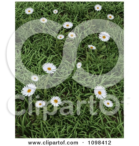 Clipart 3d Wild Daisies In Green Grass - Royalty Free CGI Illustration by KJ Pargeter