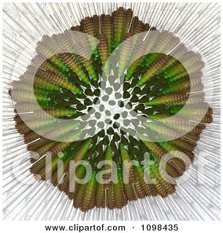 Clipart 3d Dandelion Seed Head Shown With A Fibonacci Sequence Pattern 5 - Royalty Free CGI Illustration by Leo Blanchette