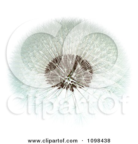 3d Dandelion Seed Head Shown With A Fibonacci Sequence Pattern 1 Posters, Art Prints