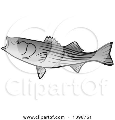 Clipart Bass Fish With An Open Mouth - Royalty Free Vector Illustration by Lal Perera