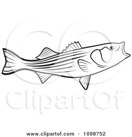 Clipart Outlined Bass Fish With An Open Mouth - Royalty Free Vector Illustration by Lal Perera