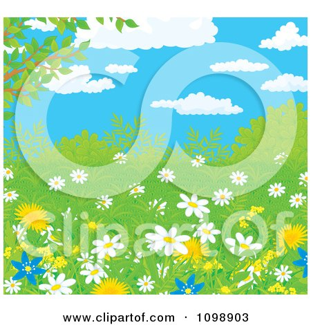 Clipart Wild Daisies And Dandelion Flowers In Spring Growth Under A Blue Cloudy Sky - Royalty Free Vector Illustration by Alex Bannykh
