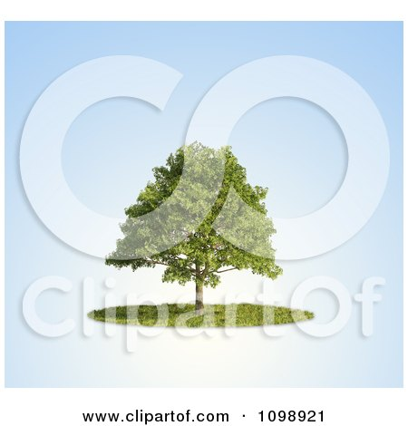 Clipart 3d Lush Tree And A Circle Of Grass Over Blue - Royalty Free CGI Illustration by Mopic