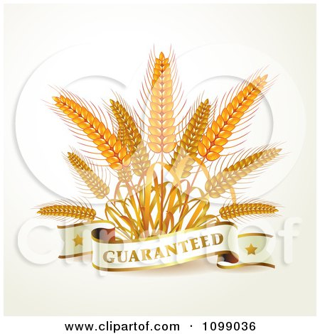 Clipart Guaranteed Banner With Whole Grain Wheat - Royalty Free Vector Illustration by merlinul