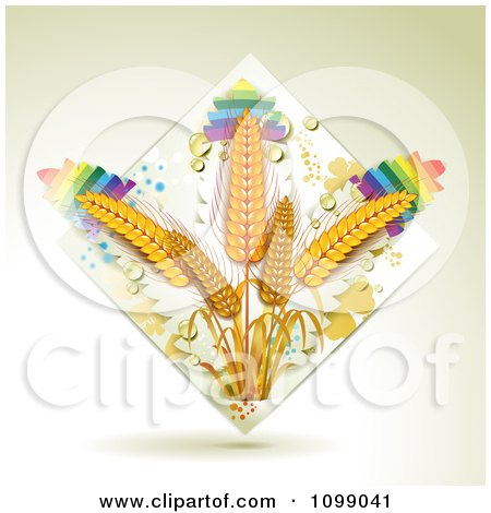 Clipart Whole Grain Wheat In A Diamond Of Dew And Rainbows - Royalty Free Vector Illustration by merlinul
