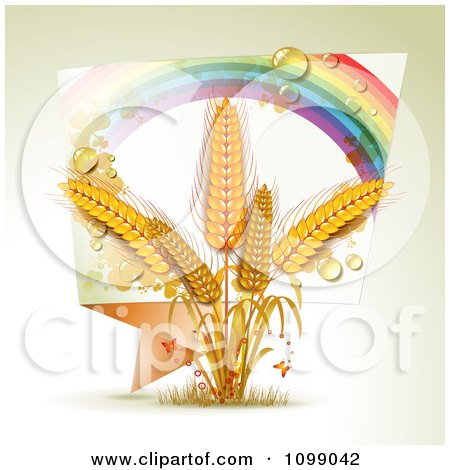 Clipart Rainbow Origami Banner And Whole Grain Wheat - Royalty Free Vector Illustration by merlinul