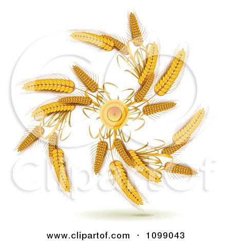 Clipart Spiral Of Whole Grain Wheat - Royalty Free Vector Illustration by merlinul