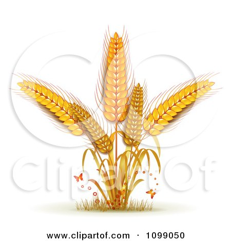 Clipart Tiny Butterflies And Whole Grain Wheat - Royalty ...