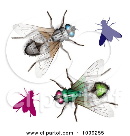 Clipart 3d Colorful Flies - Royalty Free Vector Illustration by merlinul