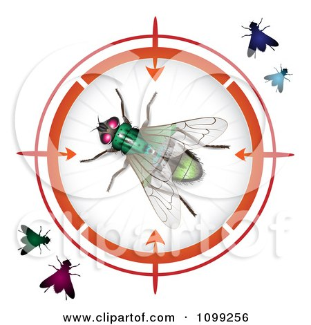 Clipart 3d Colorful Flies Wiith One In A Target Viewer - Royalty Free Vector Illustration by merlinul