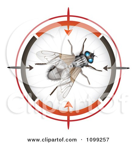 Clipart 3d House Fly In A Target Viewer - Royalty Free Vector Illustration by merlinul