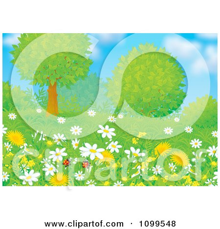 Clipart Pair Of Ladybugs With Wild Daisies Dandelions And Trees On A Spring Day - Royalty Free Illustration by Alex Bannykh