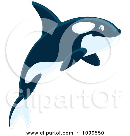 Clipart Happy Orca Killer Whale - Royalty Free Vector Illustration by Alex Bannykh