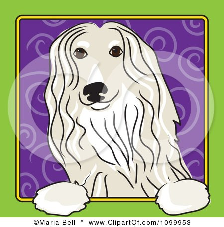 Clipart Folk Art Styled Afghan Hound Dog Looking Out Through A Green Frame With A Purple Spiral Background - Royalty Free Vector Illustration by Maria Bell