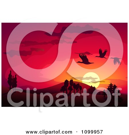 Clipart Silhouetted Storks Flying Over A Landscape Against A Red Sunset - Royalty Free Vector Illustration by Oligo