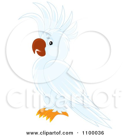 Clipart White Cockatoo Parrot - Royalty Free Vector Illustration by Alex Bannykh