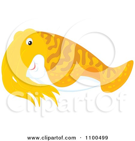 Clipart Cute Orange Cuttlefish - Royalty Free Vector Illustration by Alex Bannykh