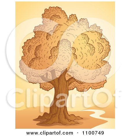 Clipart Tree At Sunset With A Creek Or Nature Trail - Royalty Free Vector Illustration by visekart