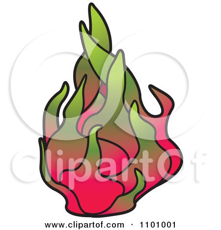 Clipart Dragon Fruit - Royalty Free Vector Illustration by Lal Perera