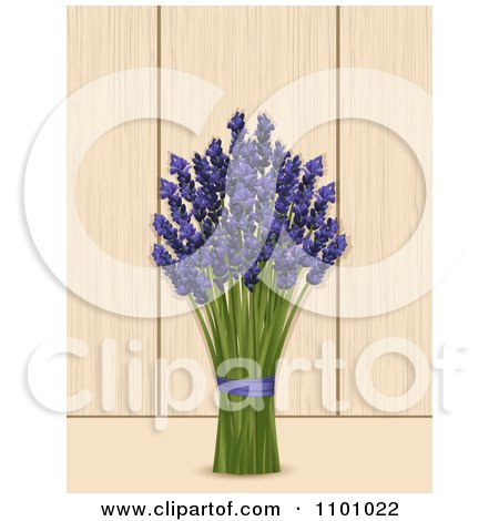 Clipart Bunch Of Lavender Over Wood Panels - Royalty Free Vector Illustration by elaineitalia