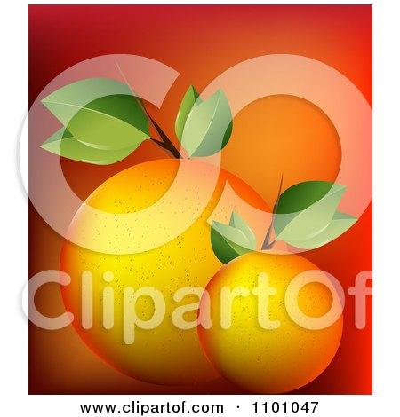 Orange+fruit+wallpaper