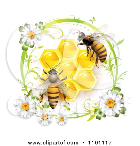 Clipart Honey Bees Over Honeycombs In A Green Daisy Frame - Royalty Free Vector Illustration by merlinul