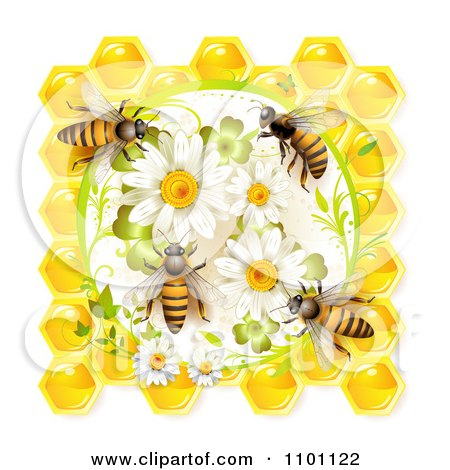 Clipart Honey Bees On Daisies Clovers And Honeycombs - Royalty Free Vector Illustration by merlinul