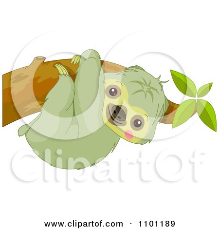 Clipart Happy Cute Sloth Hanging On A Tree Branch - Royalty Free Vector Illustration by Pushkin