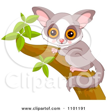 Clipart Happy Cute Galago Bushbaby In A Tree - Royalty Free Vector Illustration by Pushkin
