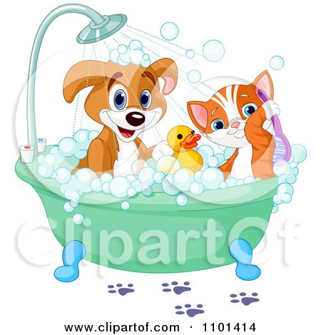 Cute Happy Puppy And Cat Bathing With A Rubber Duck Posters, Art Prints