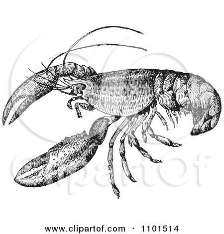 Clipart Retro Black And White Crayfish - Royalty Free Vector Illustration by BestVector