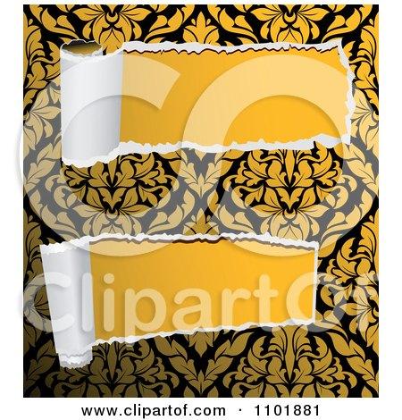 Clipart Two Pieces Of Torn Damask Paper Revealing Solid Yellow - Royalty Free Vector Illustration by Vector Tradition SM
